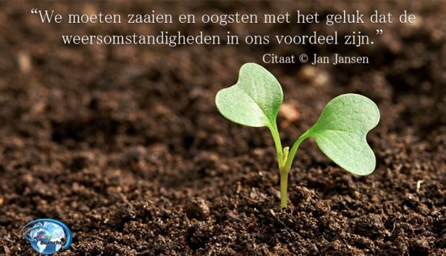 jan-jansen-easybranches-quotes-26-geluk-citaat-nederlands