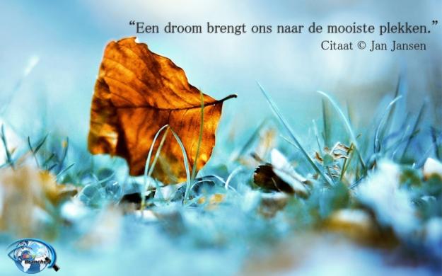jan-jansen-easybranches-quotes-7-mooiste-plekken-citaat-nederlands