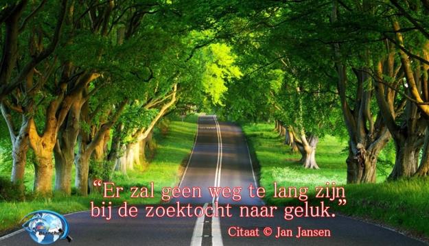 jan-jansen-easybranches-quotes-45-weg-citaat-nederlands-citaten-en-levensverhalen